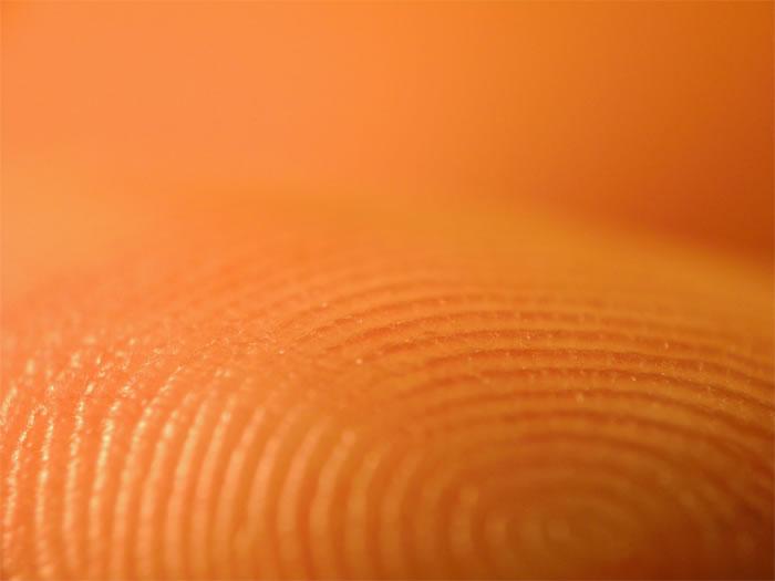 Authenticating Art via Fingerprints